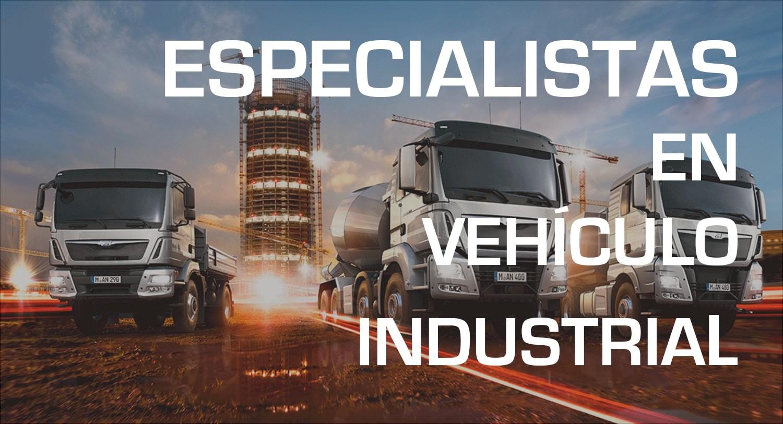 Vehículo industrial, cargo...